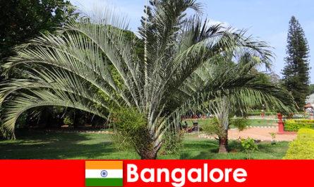 여행 가치가 있는 모든 외국인을 위해 일년 내내 방갈로르 쾌적한 기후