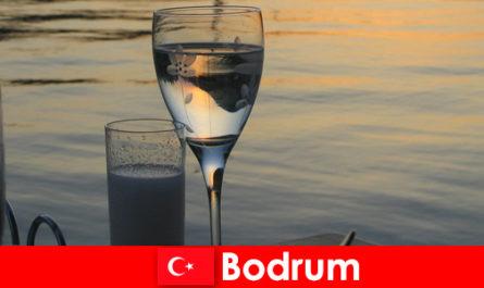 터키 보드룸 디스코텍 클럽과 젊은 관광객을위한 바에서