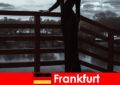 프랑크푸르트 암 메인에서 관능적 인 관리자 에스코트는 머리에서 발끝까지 고객을 애지중지