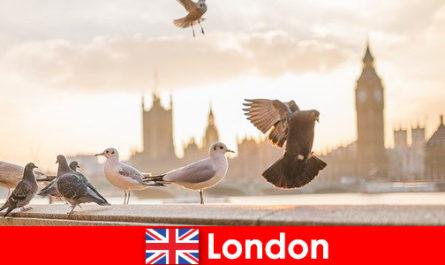 국제 방문객을 위한 런던의 관심 장소