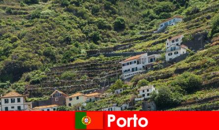 전 세계에서 온 와인 애호가를 위한 포르투 휴양지