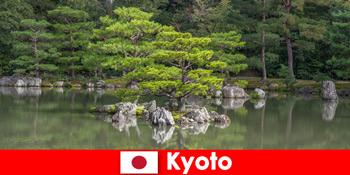교토에서 편안한 산책을 위한 낯선 이방인을 초대하는 일본 정원