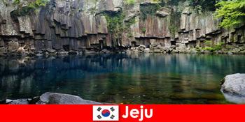 제주남의 아름다운 화산 풍경을 여행하는 이국적인 장거리 여행