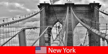 세계 대도시 뉴욕 미국으로의 자발적인 해외 여행