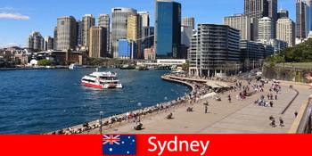 전 세계 방문객을 위한 시드니 오스트레일리아 시내 전체의 탁 트인 전경