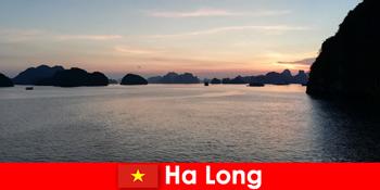 해외에서 스트레스를 받은 관광객을 위한 하롱 베트남에서의 완벽한 휴가