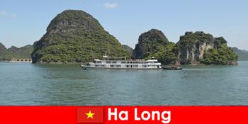 하롱 베트남에서 투어 그룹을 위한 다일 크루즈가 매우 인기가 있습니다.