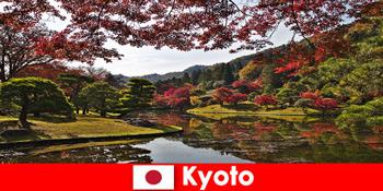 유명한 단풍 색칠을 위해 교토 일본해외 여행