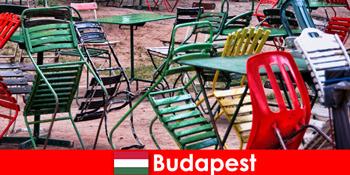 아름다운 부다페스트 헝가리에서 여행자들을 기다리고 있는 흥미로운 비스트로, 바, 레스토랑이 있습니다.