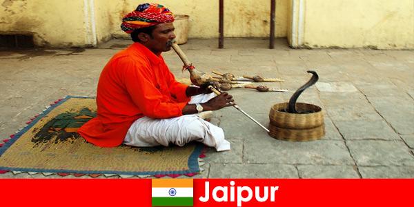 자이푸르 인도에서는 휴가객들이 분주한 거리에서 뱀 춤과 엔터테인먼트를 경험합니다.